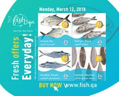 Qa : Online Fish Store In Qatar. Check out Today's Online Fish Offers. We have daily customized offers for Buyers. See Our Online Fish Offers. Business Card Template Photoshop, Fish, Cards, Pisces, Maps, Playing Cards