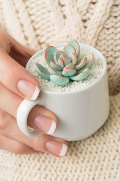 A succulent with a secret (it's made of clay)