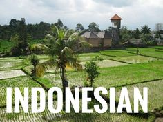 Free Indonesian language lessonswritten by Vremita Desectia at ielanguages.com - Learn Indonesian vocabulary, grammar, and phrases online for free