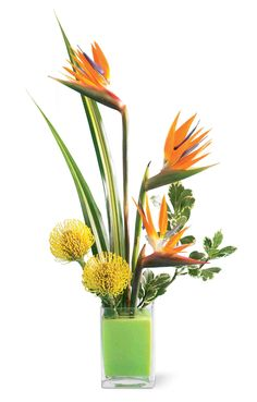 date palm bird of paradise floral vase arrangement - Google Search
