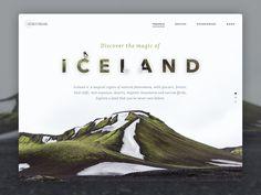 Landing iceland
