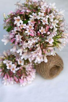 #bucheteroz #pink #inlove My Flower, Flower Arrangements, Floral Wreath, Bouquet, Wreaths, Table Decorations, Garden, Pink, Home Decor