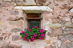 window-flowers-05.jpg alto adige, dolomites, europe, flowers, horizontal, images, italy, windows