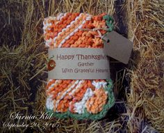 365 Project---Day 263:  Thanksgiving dishcloth gift!