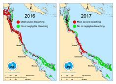 'Huge blow': Back-to-back bleaching covers two-thirds of Australia's Great Barrier Reef