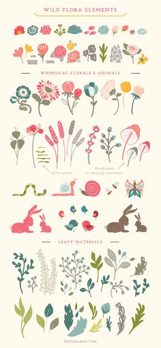 Wild Flora Wonders by Denise Anne on @creativemarket