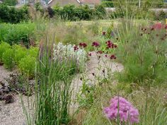An inward facing garden :: Quercus Landart - We believe in sustainable, naturalistic planted spaces.