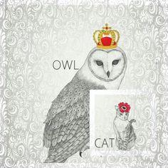 CAT&OWL