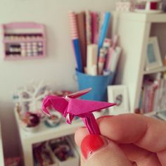 .@Lu Poppins | Yesterday I got the cooles little gift from navucko, a tiny parrot.  // K wie...
