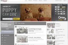 Century21 Puppy Cam on YouTube