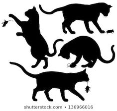 Find Four Editable Vector Silhouettes Cat Playing stock images in HD and millions of other royalty-free stock photos, illustrations and vectors in the Shutterstock collection. Thousands of new, high-quality pictures added every day. Black Cat Silhouette, Cat Wall, Black Cats, Rock Painting, New Pictures, Royalty Free Photos, Painted Rocks, Vector Art, Moose Art
