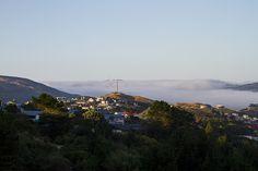 Fog over Porirua | © Elyse Childs Photography