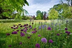 The Royal Gardens Pinned by https://www.itsalight.co.uk to Garden Design #garden #homedecor #interiordesign