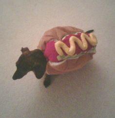 Sam's a hot dog