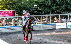 Twighlight Polo  - Photos by Chris Weber ---   Twighlight Polo - Great Meadow, The Plains, VA  [vc_maso... -