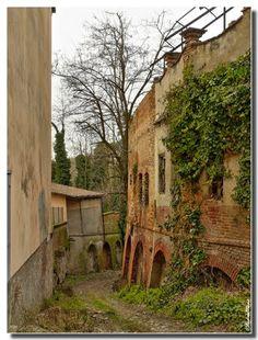 Vezza d'Alba - La montà Walk To Remember, Alba, Spaces, Explore, Exploring