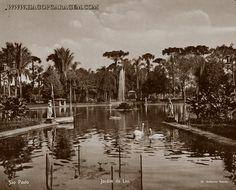 Jardim da Luz Autoria: Guilherme Gaensly. Data: 1901/1910 tratamento em sépia: por Hagop Garagem Foto nº 020 http://www.hagopgaragem.com/imagens_antigas_fotografo3.html