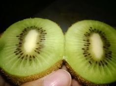 kiwi! fresh and sour haha