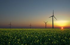 Green Energy Project