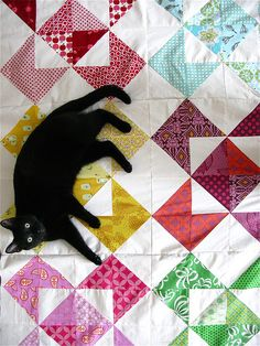 This is what my quilts tend to look like... except the cat's not black and the quilt isn't quite as fancy.