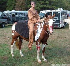 costumes for horses | ... your best horse costume! at the Forum Contests forum - Horse Forums