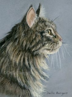Cats Tiger Striped Maine Coon Cat Pastel by Della Burgus, painting by artist Art Helping Animals