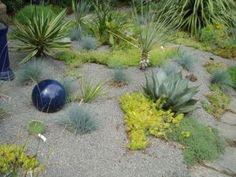 scree garden, on Sauvie Island