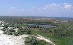 Безлюдний острів - так можна сказати про це заповідному місці, що омивається водами Чорного моря. Джарилгач відділяється від суші...