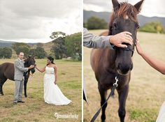 Ishara and Byron's Beautiful Country Wedding in Canberra - Gemma Clarke Photography Bridesmaid Bouquet, Bridesmaid Dresses, Swarovski Crystal Earrings, Hair Studio, Walking Down The Aisle, Horses, Country, Pictures, Photography