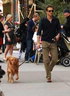 Celebrity and Dog Cute Pairings