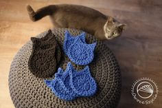 Cats: black, blue & russianblue ;)