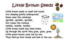 Little_Brown_Seeds_poem.doc
