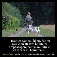 Trăiţi ca oamenii liberi!
