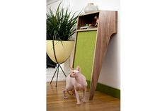 Mid Century Modern Pet Furniture // Cat Scratcher // Console Table
