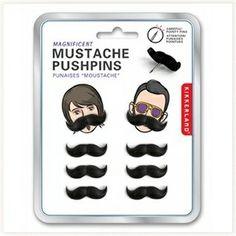 Punaises Moustaches #punaises #moustaches