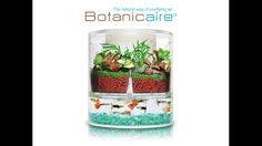 Botanicaire: A Purposeful Indoor Ecosystem project video thumbnail
