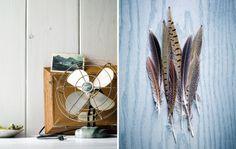 fan + feathers by Stephanie Hanes