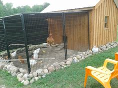 Chicken Coop - - rocks around the bottom of coop and pen deter predators. Building a chicken coop does not have to be tricky nor does it have to set you back a ton of scratch. Backyard Chicken Coops, Chicken Coop Plans, Building A Chicken Coop, Diy Chicken Coop, Backyard Farming, Chickens Backyard, Farming Life, Chicken Run Ideas Diy, Inside Chicken Coop