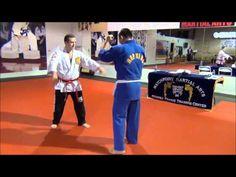 Hapkido wrist and elbow locks - YouTube