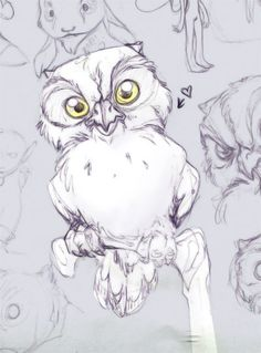An owl on a perch - Sketch by *thalia-is-crazy on deviantART