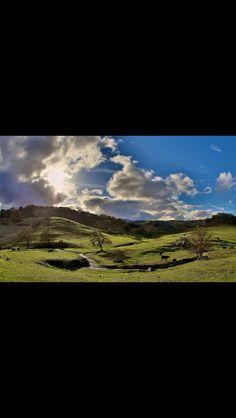 10 Best Morgan Hill Ca Images On Pinterest Morgan Hill
