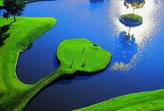 #Golf #Golfing #Course #Summer #Lifestyle