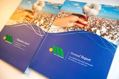 Grupo André Maggi - Financial Statements 2011 and 2010 on Behance