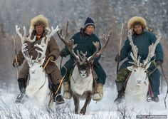 Mongolian elves delivering presents for Santa Mongolia, Human Personality, Folk, Asia, Photos Du, People Around The World, World Cultures, Word Art, Illustrations