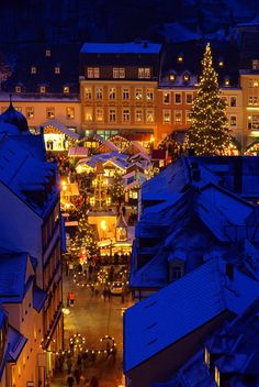 Christmas Market scene in Germany   http://rivers.affordabletours.com/page/viking-holiday-river-cruises/?src=fp468