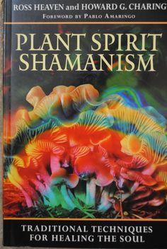 shamanism//