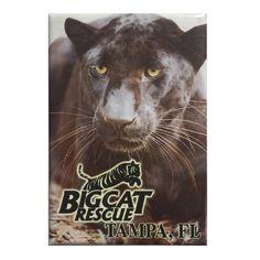 Magnet - Laminated Photo Black Leopard