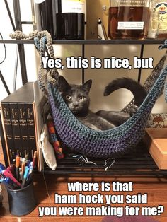 Free Crochet Toy Hammock Pattern I Crocheted A Cat Hammock Crochet - Cat in the box ❤️ - Katzen :) Crochet Animals, Crochet Toys, Free Crochet, Crochet Cat Toys, Crochet Cat Pattern, Gato Crochet, Toy Hammock, Diy Cat Hammock, Hammock Ideas