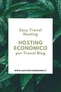 Easy, Hosting, Cards Against Humanity, Tips, Blogging, Travel, Ireland, Italia, Viajes
