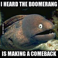 Bad joke eel down under...